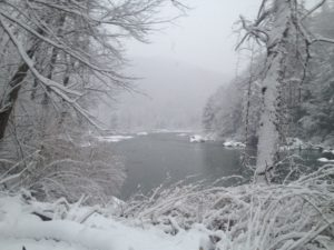 winter put-in