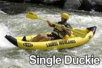 single-duckie-labeled.jpg