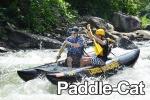 paddle-cat.jpg
